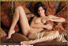 Morango Suzanna A