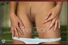 The Diary – Eddison